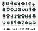 Watercolor Animal Footprint...
