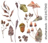 watercolor forest objects set.... | Shutterstock . vector #1411417043