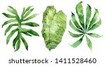 set of tropical leaves. jungle  ... | Shutterstock . vector #1411528460