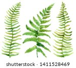 set of tropical leaves. jungle  ... | Shutterstock . vector #1411528469