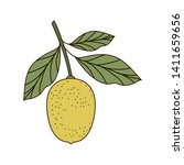lemon with leaves isolated icon   Shutterstock .eps vector #1411659656