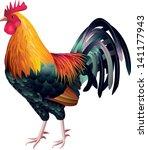 rooster vector | Shutterstock .eps vector #141177943