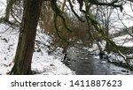 Beautiful White Snow And Stream ...