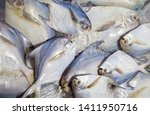 white pomfret  fish .fresh... | Shutterstock . vector #1411950716