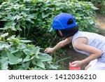 asian chinese little girl... | Shutterstock . vector #1412036210