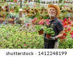 Senior Worker Holding Geranium...