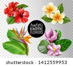 tropical flowers collection on... | Shutterstock .eps vector #1412559953
