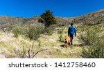 Stock photo man and dog walking through grassy mountain field 1412758460