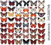 Collection Of Butterfly...