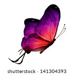 Stock photo color butterfly isolated on white 141304393