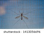 closeup view of mosquito... | Shutterstock . vector #1413056696