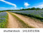 An Old Country Dirt Road In A...