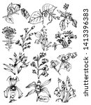 sketchy plants vector pack 03 | Shutterstock .eps vector #1413396383