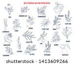 best essential oils for stress... | Shutterstock .eps vector #1413609266