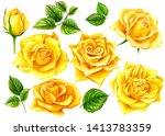 Set Of Summer Flowers  Yellow...