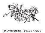 apple flowers on the   white... | Shutterstock .eps vector #1413877079