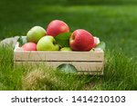 fresh garden green and red... | Shutterstock . vector #1414210103