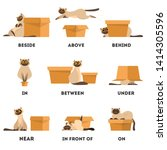 cat and box set. learning... | Shutterstock .eps vector #1414305596