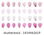 realistic pink sakura petals... | Shutterstock .eps vector #1414462619
