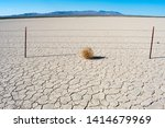 Tumbleweed On Dry Cracked...