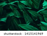 Beautiful Green Leaves For...