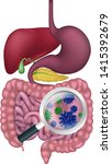 gut bacteria being shown with a ... | Shutterstock .eps vector #1415392679