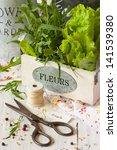Fresh kitchen garden herbs, scissors and kitchen twine on a white wooden board. - stock photo