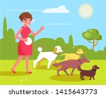 Stock vector dog walking services woman walks with four dogs vector cartoon isolated art 1415643773