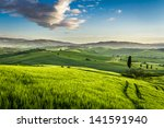 Green Valley At Sunset In...