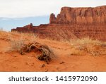 wild cat hiking trail in... | Shutterstock . vector #1415972090