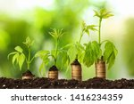 soil with coins and growing... | Shutterstock . vector #1416234359