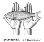 Stock photo woman s hands couple holding a herring fish on her palms vintage engraving stylized drawing 1416288110