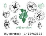 prickly pear flowers set. hand ... | Shutterstock .eps vector #1416963833
