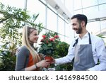 man gardener giving red flower... | Shutterstock . vector #1416984500