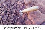 Digging Trowel In The Soil At...