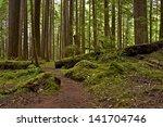 Mossy Us Pacific Northwest...