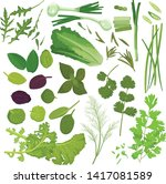 greens set with arugula  chives ... | Shutterstock .eps vector #1417081589