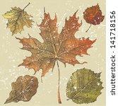 5 Hand Drawn Autumn Leaves