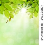 natural background with free... | Shutterstock . vector #141726874