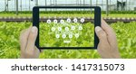 Small photo of smart agriculture with technoloty concept, farmer use deep learning with artificial intelligence to classification, regression, and clustering. In farming, they are used to predict yield and quality