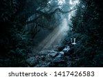 deep tropical jungle in darkness | Shutterstock . vector #1417426583