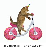 The Cat Unicorn Is Riding The...
