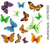 vector set of butterflies | Shutterstock .eps vector #14178103