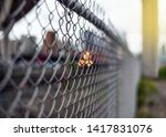Closeup Of Chain Link Fence By...