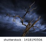 Dead Tree With A Dark Cloudy...