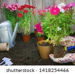 a little girl is planting... | Shutterstock . vector #1418254466