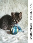 domestic kitten on white shaggy ... | Shutterstock . vector #1418373773