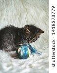 domestic kitten on white shaggy ... | Shutterstock . vector #1418373779