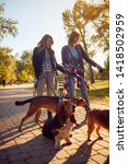 Stock photo happy girls walking and playing with their dogs while out on a walk 1418502959