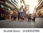 Stock photo group of happy dog walking on leash with professional dog walker couple on the street 1418502980